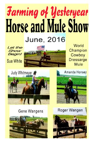 horse2016pictures